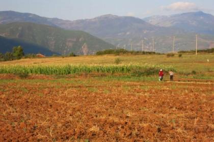 Albania Kukes Gjallica fields