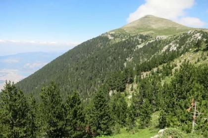 Albania Kukes Gjallica mountain