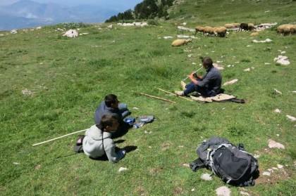 Albania Kukes Gjallica shepherd friends