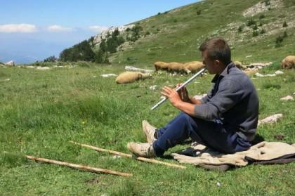 Albania Kukes Gjallica shepherd musician