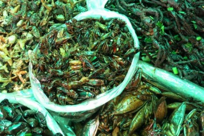 Cambodian street food insects