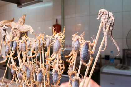 China-scorpion-seahorse-food