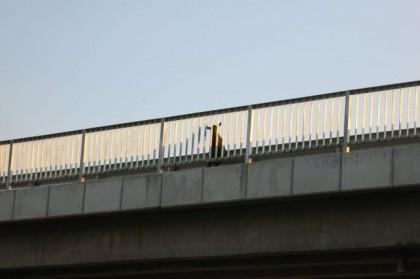Hitchhiking Macedonia Bulgaria goat on bridge