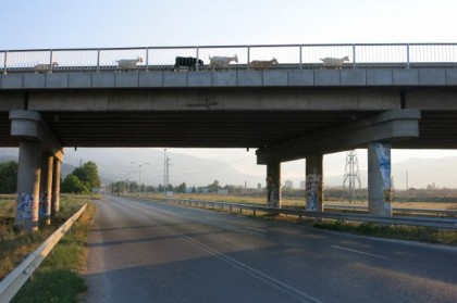 Hitchhiking Macedonia Bulgaria goats on bridge
