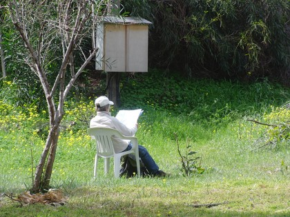 Kurion, woman reading in nature