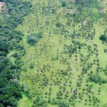Aerial pictures from the Nicaraguan Caribbean coast (20)