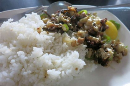 Philippines food rice
