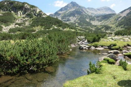 Pirin Mountains river