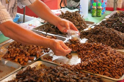 Thai food: insects
