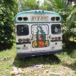 Chicken bus on backyard