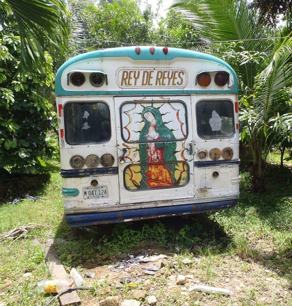Chicken bus on backyard