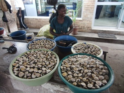 Clam seller, Maputo fishmarket