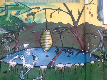 Costa Rica street art (8)