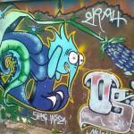 Costa Rica street art (9)