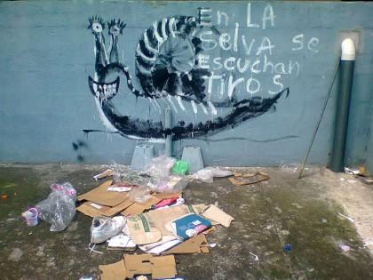 Costa Rica street art (20)