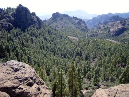 Gran Canaria trekking