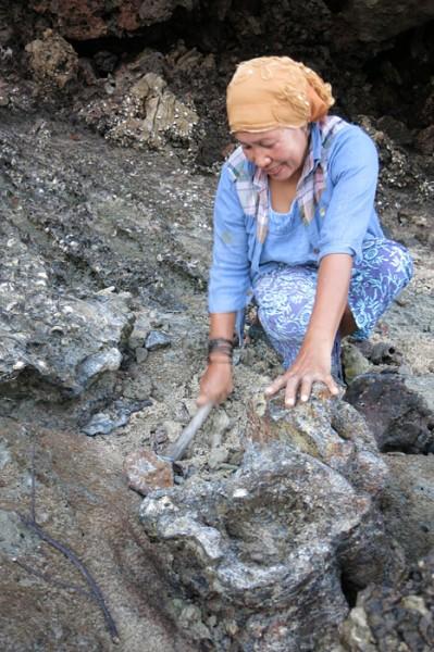 Ko Phi Phi mussels lady