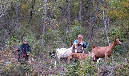 Locals we met on the way walking up the mountain