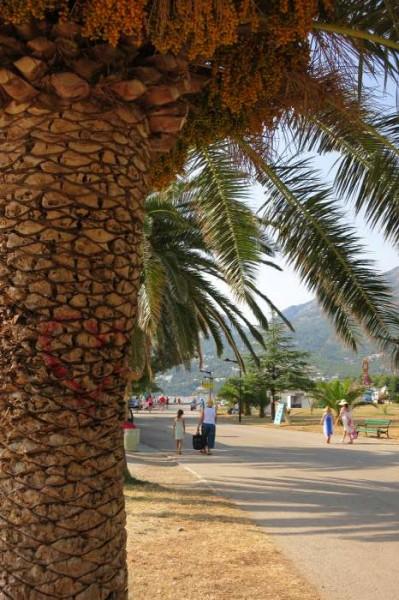 Montenegro Bar coast
