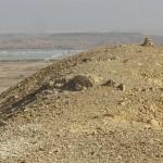 Moshav farms