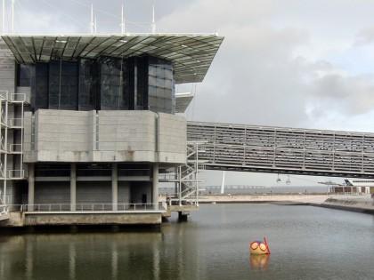 Oceanario de Lisboa, Aquarium Lisbon (Portugal)
