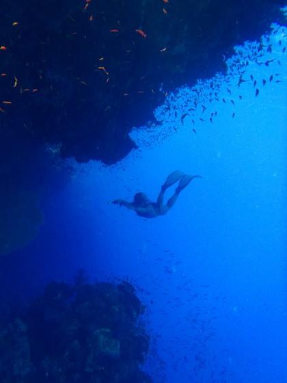 Ras Muhammad free diving