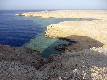 Shark bay Sharm