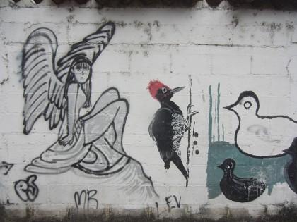 Street art Guatemala (18)