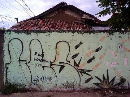 Street Art in Nicaragua (27)