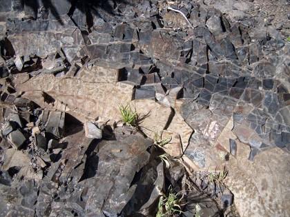 Tenerife rock