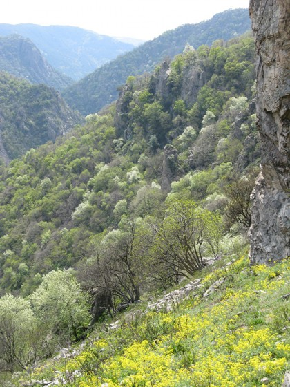 Trekking in the beautiful nature with mountains