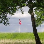 Copenhagen pictures: Danish flag