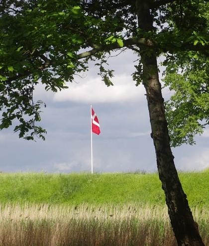 Copenhagen pictures: Danish flag