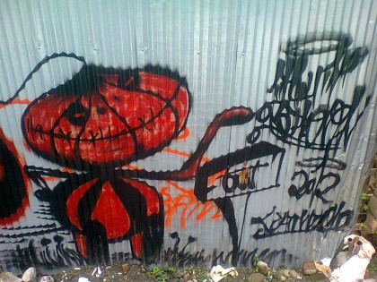 Costa Rica street art (12)
