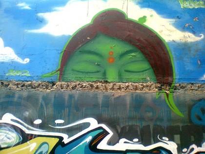 Costa Rica street art (21)