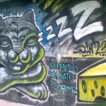 Costa Rica street art (7)