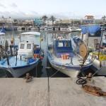 Cyprus fish boats