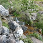 Running water from mountain top spring