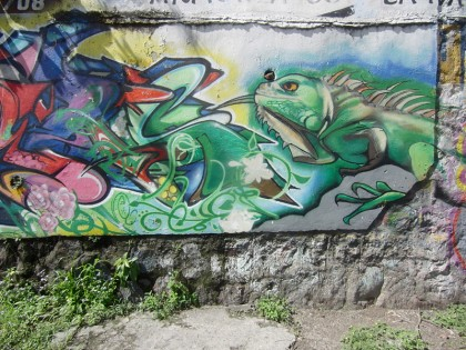 Street Art in Honduras (12)