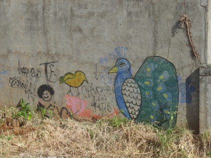 Street Art in Nicaragua (14)