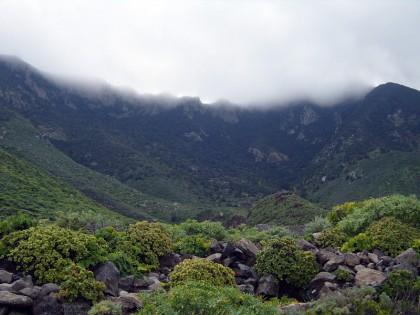 Tenerife climate